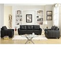 9701 Dwyer Sofa Set Black